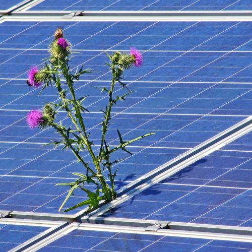 California hits one million solar roofs milestone
